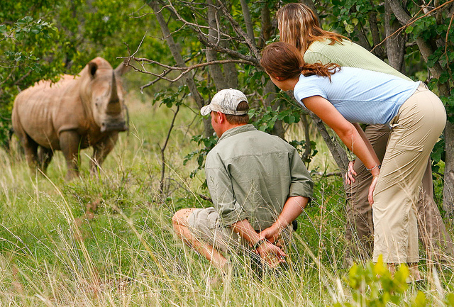 Exciting Adventure Tours in Africa